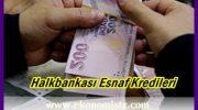 Halkbank Esnaf Kredisi Hesaplama ve Esnafa Geri Ödemesiz Kredi Destekleri