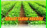 Ziraat Bankası Çiftçi Kredisi Başvurusu